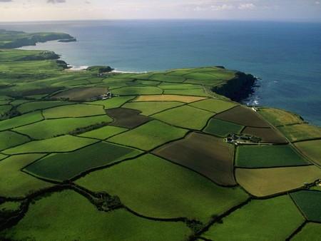 Оценка рыночной стоимости земельного участка